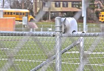 Chain Link at Conestoga HS